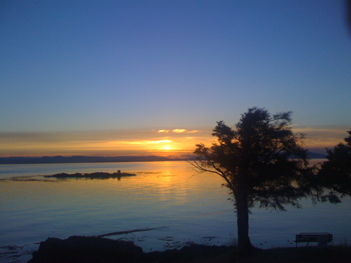 Just another day San Juan Island style