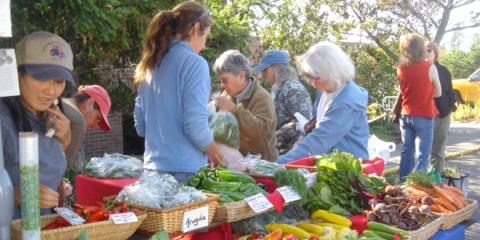 San Juan Islands Agricultural Guild - SJI Farmers Market 700 x 330